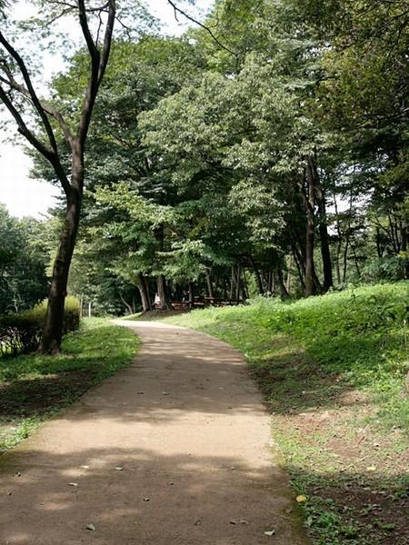 園内美林活動(県立津久井湖城山公園)