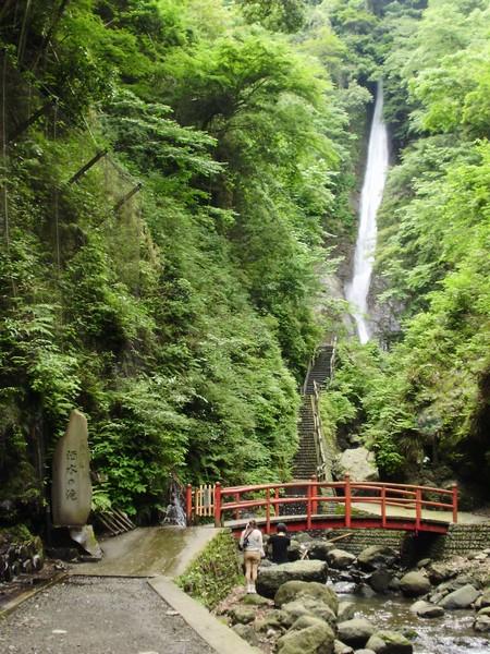 「山北町森林セラピー体験ツアー」参加者募集!