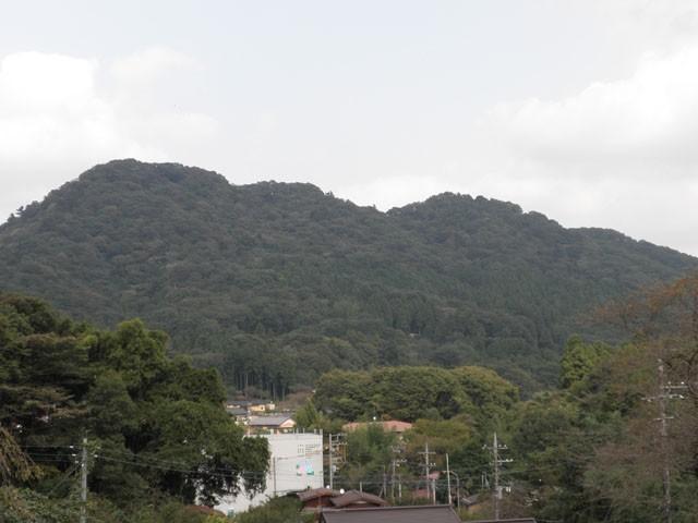 津久井城跡遺跡見学会