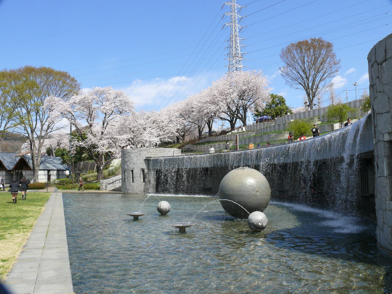 (Copy) 津久井湖さくらまつり(水の苑地)