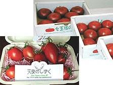 山北町産湘南ポモロントマト