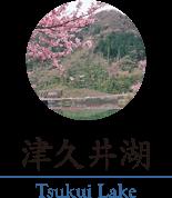 津久井湖のご紹介ページへのリンク画像