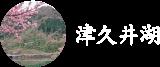 津久井湖の一覧