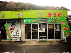 神奈川県農協茶業センター