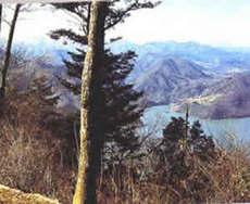 嵐山(かながわの景勝50選)