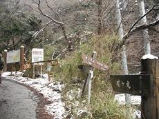 東海自然歩道 北丹沢付近コースのタイトル画像