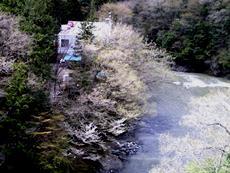 亀見橋バカンス村のタイトル画像