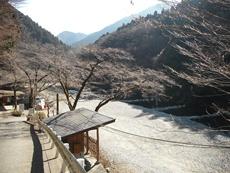 早戸川国際マス釣場のタイトル画像