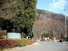 津久井 又野公園のタイトル画像