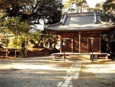 八幡神社の社叢林