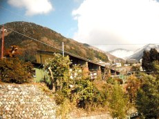 くろくら森の家のタイトル画像