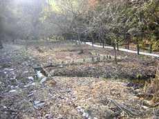 城山自然ふれあい水路のタイトル画像