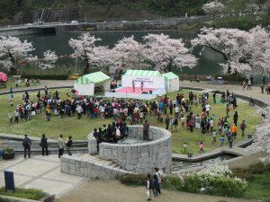 第21回津久井湖さくらまつり(水の苑地)のタイトル画像