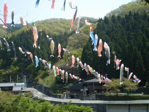 こいこいまつり~和田の里交流祭~