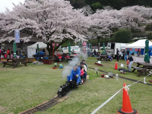 第20回津久井湖さくらまつり(花の苑地)