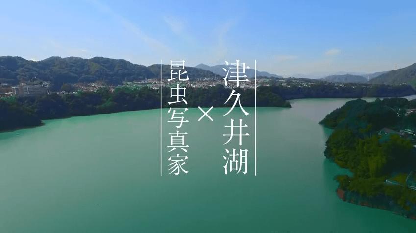 「津久井湖 × 昆虫写真家」