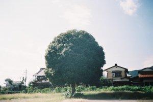 東京造形大学 写真専攻領域『相模湖エリアスタディ展』