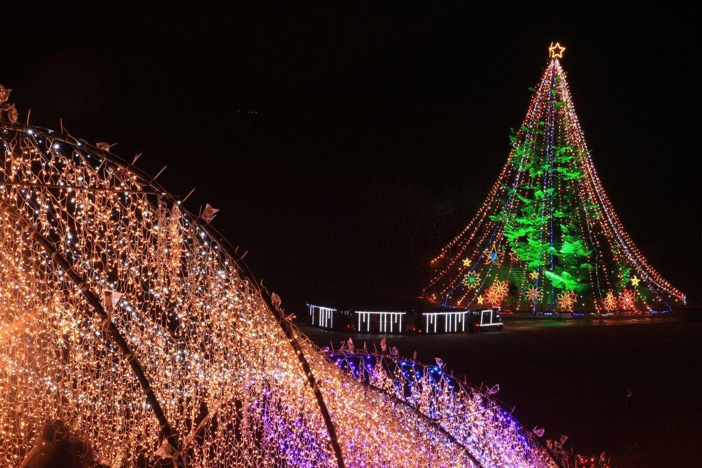 第33回宮ヶ瀬クリスマスみんなのつどい~宮ヶ瀬光のメルヘン~