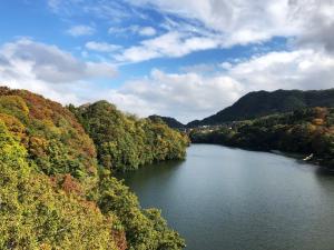 2018年 やまなみ五湖からの紅葉便りの写真