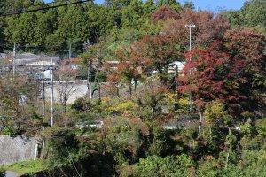 紅葉もイルミももうすぐ 。あれ? 城山湖の水が無い!!の写真