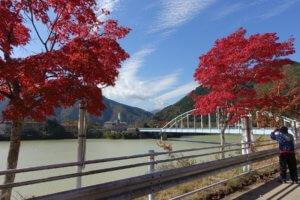 やまなみ五湖 紅葉の足音♪2019の写真
