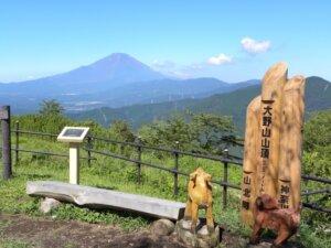 2021年 大野山開きのタイトル画像